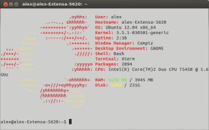 archey ubuntu terminal afiseaza informatii si logo